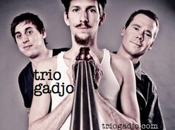 Image for Trio Gadjo