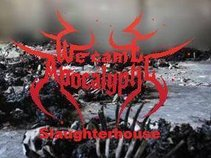 We Came Apocalyptic