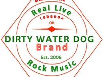 Dirty Water Dog