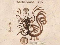 Nadishana Trio