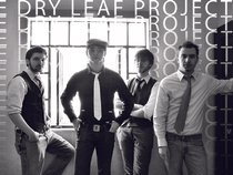 The Dry Leaf Project
