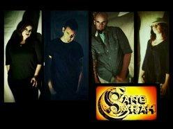 Image for The Liars for Hire