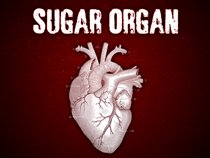 Sugar Organ