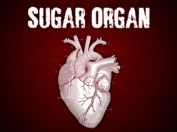 Image for Sugar Organ