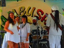 Ambush Soca Band