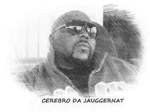 CEREBRO DA JAUGGERNAT