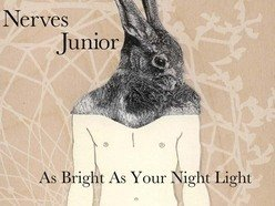 Image for Nerves Junior