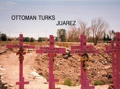 Image for Ottoman Turks