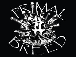Image for Primal Breed
