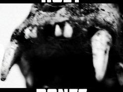 Image for Holy Bones