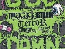 Terror (Official)