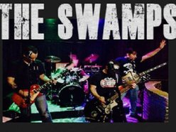 Image for The Swamps