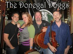 Image for The Donegal Doggs