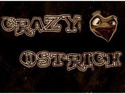 Image for Crazy Ostrich