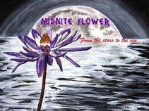 Midnite Flower