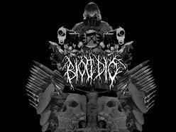 Image for Biocidio