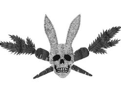 Image for NOBUNNY