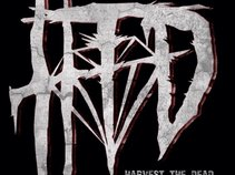 Harvest the Dead