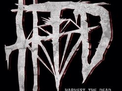 Image for Harvest the Dead