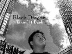 Image for Black Dragon
