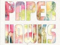 Paper Hawks
