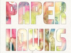 Image for Paper Hawks