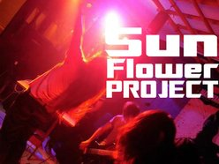 Image for SunFlowerProject