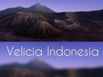 VELICIA INDONESIA