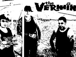Image for THE VERMIN