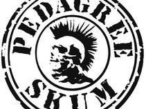 PedAgree Skum