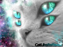 Cat Like Reflexes