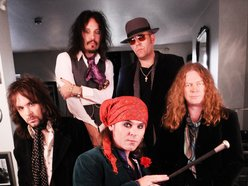 Image for The Quireboys