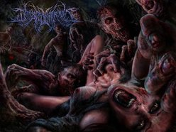 Image for Infested Entrails