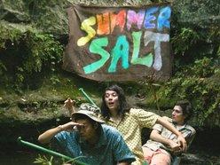 Image for Summer Salt