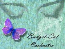 Budget-Cut Orchestra