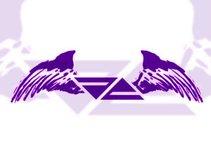 FA - Flying Angels