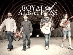 Image for Royal Albatross