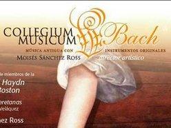 Collegium Musicum Bach/ Moisés Sánchez Ross