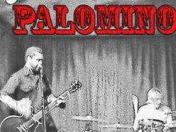 Image for Palomino