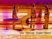 The Roscoe Experiment