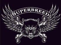 SUPERBREED