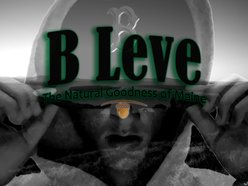 Image for B Leve
