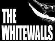 Image for The Whitewalls Band