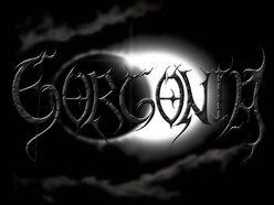 Image for GORGONIA