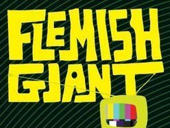 Image for Flemish Giant