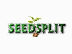 Image for Seedsplit