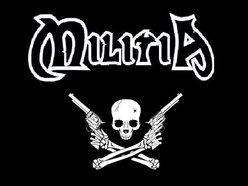 Image for Militia