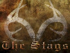 Image for The Stags