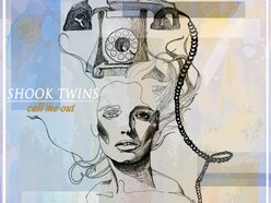 Image for Shook Twins