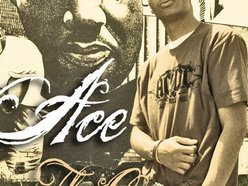 Image for Ace The Czar